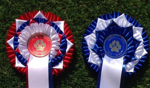 Waggy Tails Dog Show