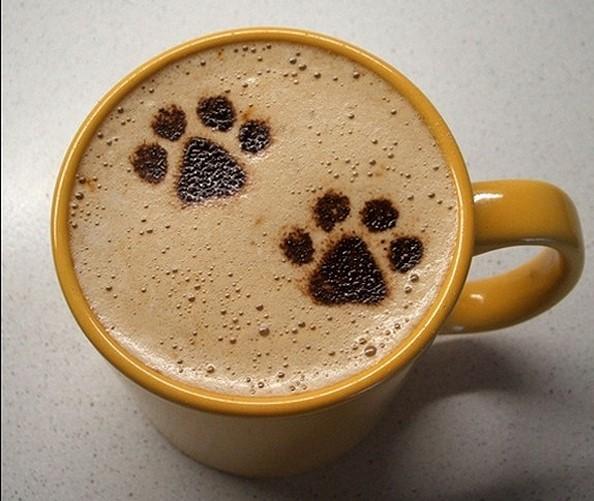 July Coffee Morning